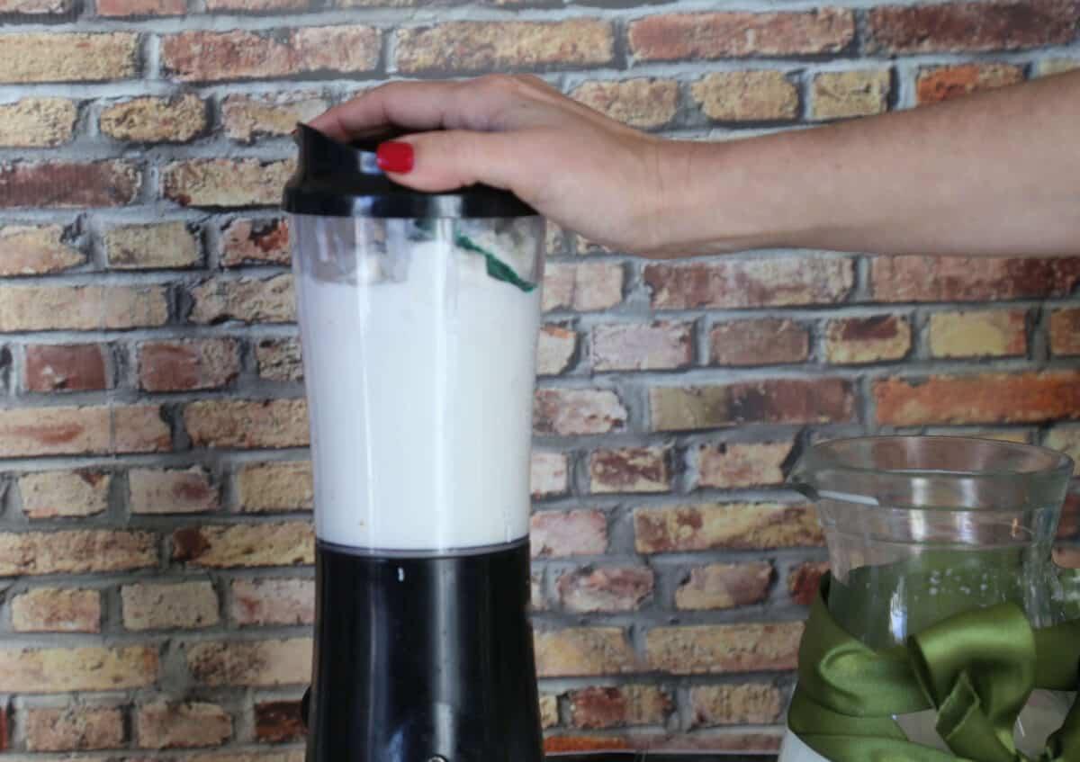 shamrock blender (1 of 1)