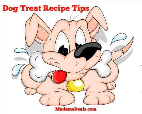 Healthy dog treat recipes tips