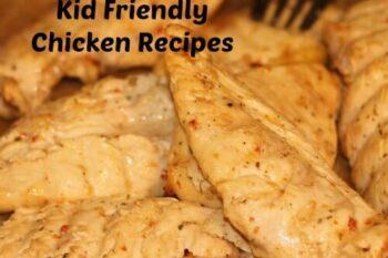 Kid Friendly Chicken Recipes 2