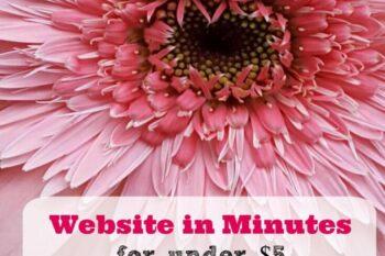 Ipage website