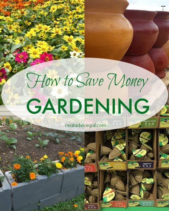 How to save money gardening
