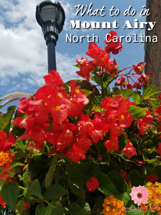 Have you been to North Carolina? I had a great time during my trip and I want to share with you my list of what to do in Mount Airy, North Carolina