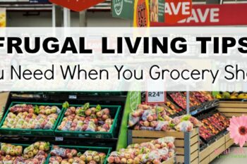 grocery shopping frugal tips